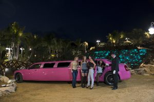 Alicante-pink-limousine
